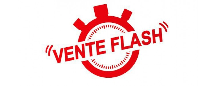 REVELLAT ELECTROMENAGER : Ventes Flash