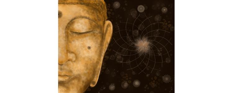 TerrEssenCiel : Week end Exceptionnel sur la Conscience !